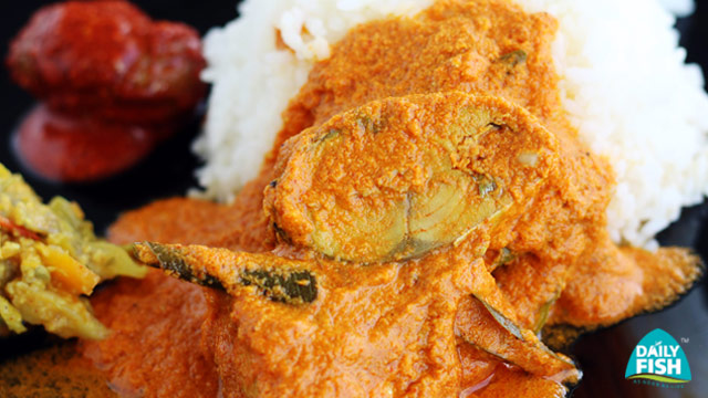 Mackerel Coconut Curry