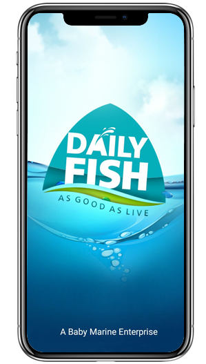Dailyfish New App Products