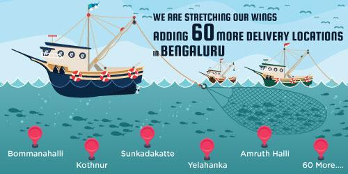Dailyfish Bengaluru New Locations