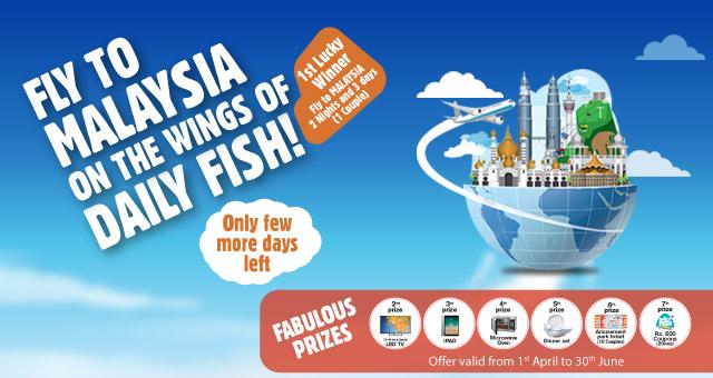 Dailyfish Fly to Malaysia