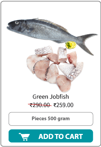 Dailyfish GreenJob fish