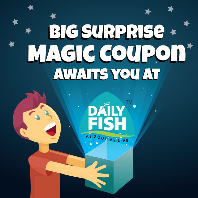 Dailyfish Magic