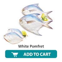 Daily Fish India White Pomfret