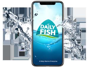 Daily Fish India App