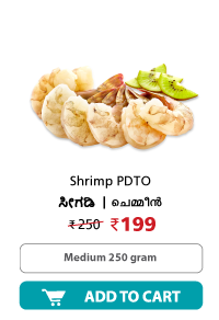 Dailyfish Shrimp PDTO Medium