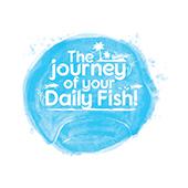 Journey of Daily Fish